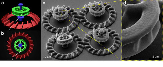 Powering 3D printed micromotors with E. coli bacteria - 3D Printing Industry
