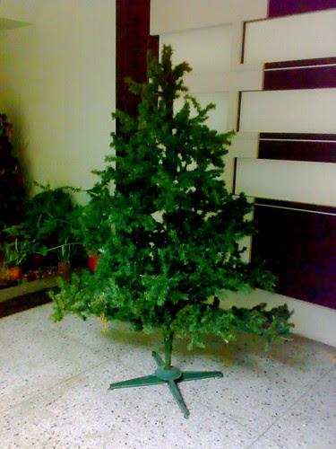 很寂寞的聖誕樹