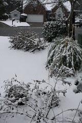 Christmas Day snow in Columbia, SC