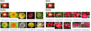 LIRE web demo screen shots