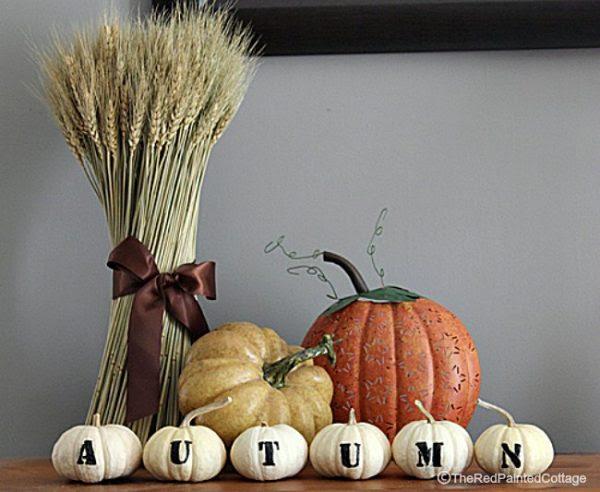 autumn-pumpkins