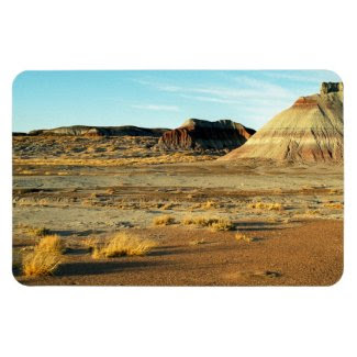 Petrified Forest Desert Rectangle Magnets