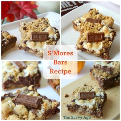Scrumptious S'mores Bars - The Savvy Age