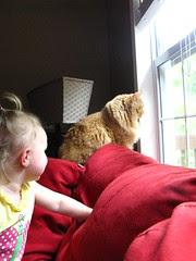 """Whatcha seeing, Jasper"""