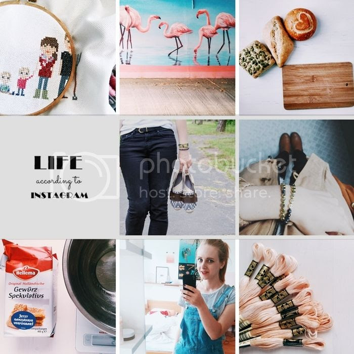photo life according to instagram june 15 1_zpscd7t5vpv.jpg