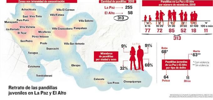 Bolivia: Pandillas en La Paz, hay 14 'zonas rojas', según el OBSCD