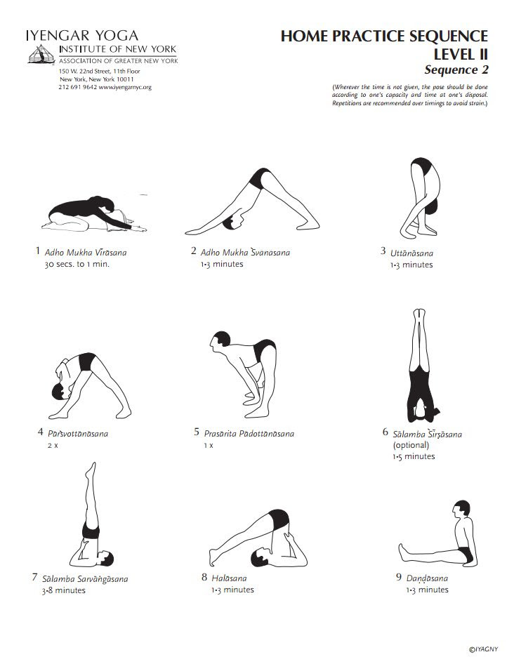 Iyengar Yoga Institute of New York Home Practice Sequence Level 2 Sequence 2