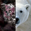 Whitebear - Lost In Vibrations [Dave Sweeten Remix] FREE DOWNLOAD