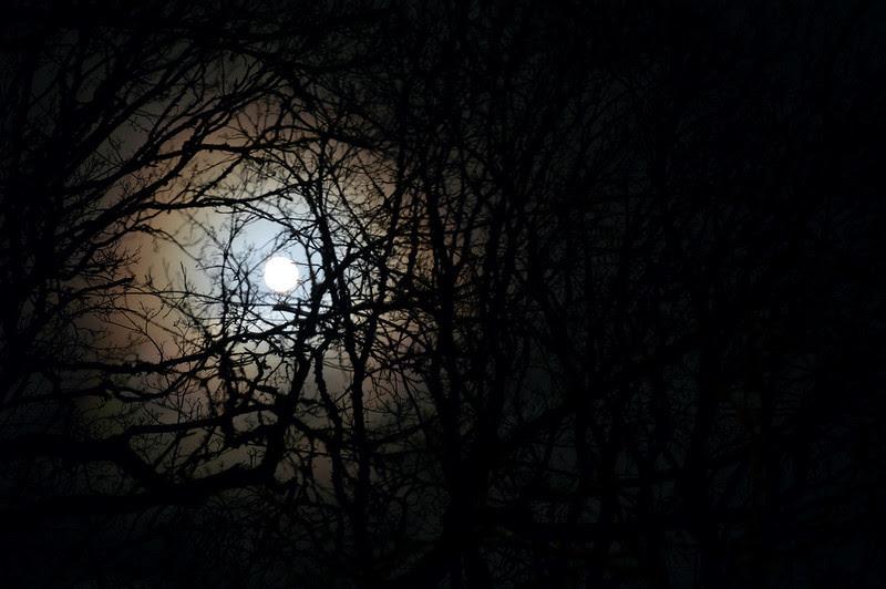 22 månen