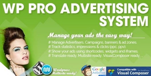 Manage ads like a pro WP PRO Advertising System Review - WP Result