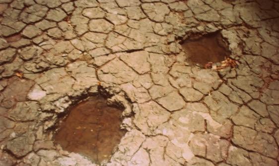 Foto realizada pelo autor do blog TOK DE HISTÓRIA em 1994
