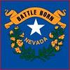 Nevada flag detail
