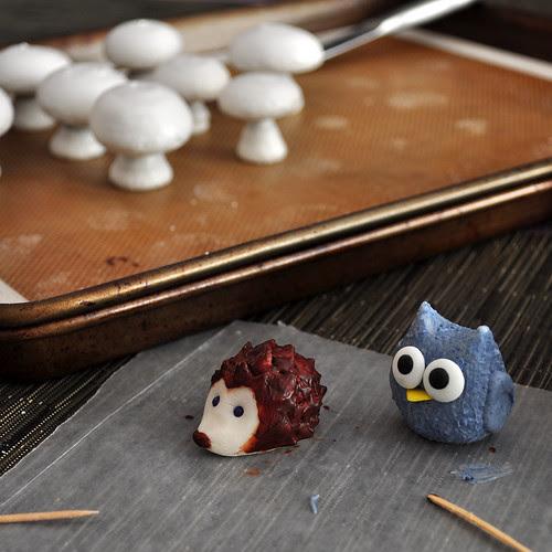 Hedgehog_Owl_Shrooms