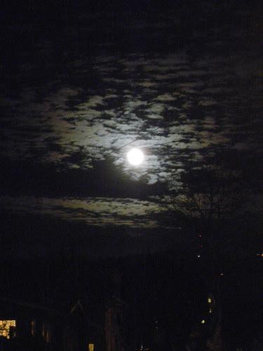 DSCN0147 _ Moon Rise, December 2013