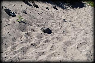 a sandy, dusty trail - Paradise Park - Mt. Hood