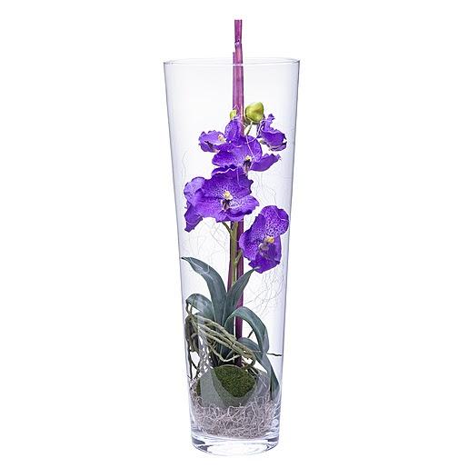 gro e glasvasen mit orchideen deneme ama l. Black Bedroom Furniture Sets. Home Design Ideas