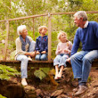 How Do Visitation Rights Work for Grandparents in Illinois? | Divorce Attorney in Chicago