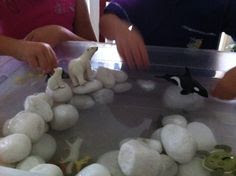 Polar experience Feeze bowls of ice and mix with large icy colour white pebbles, add some polar animals and you are at Antarctica