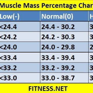 body fat percentage uk calculator