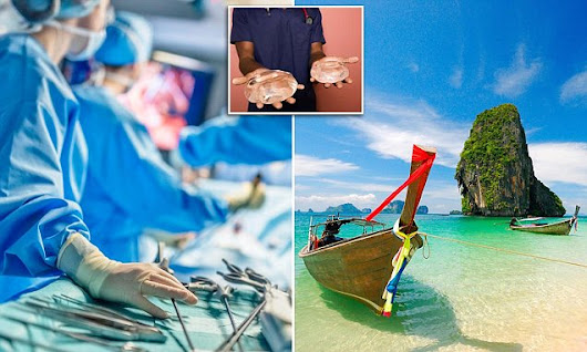 Australians opting for cosmetic and life-saving surgery overseas | Daily Mail Online