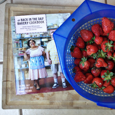 new book and recipes to make