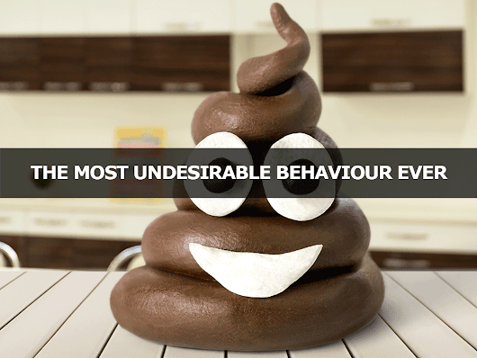 The MOST Undesirable Behaviour Ever - Lisa Larter