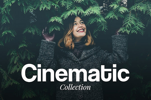 Share - Cinematic - Lightroom Presets