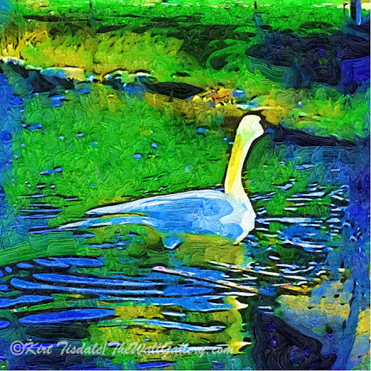 Landscape Art Print: Lone Swan In Pond