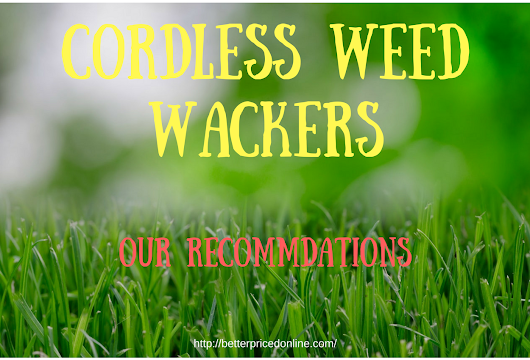 Corldless Weed Wacker (My 3 Recommended Models)