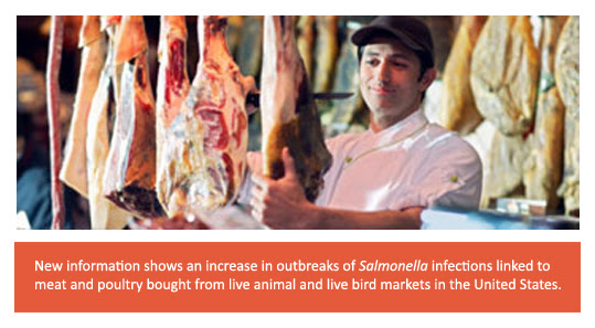 Live animals and bird markets show increase in Salmonella infections in US