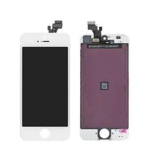 iPhone 6, le nuove immagini