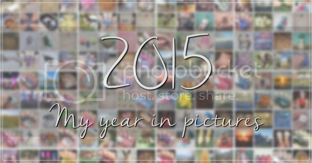 photo 2015_in_pics_cover2_zpshfecneck.jpg