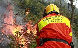 Etna, i roghi devastano il parco La Forestale: opera di piromani
