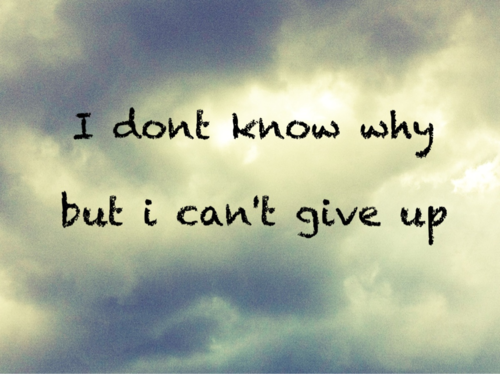 Quotes About Not Giving Up 124 Quotes