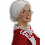 Mrs. Santa Claus Christmas White Old Lady Wig Adult Womens Costume Accessory