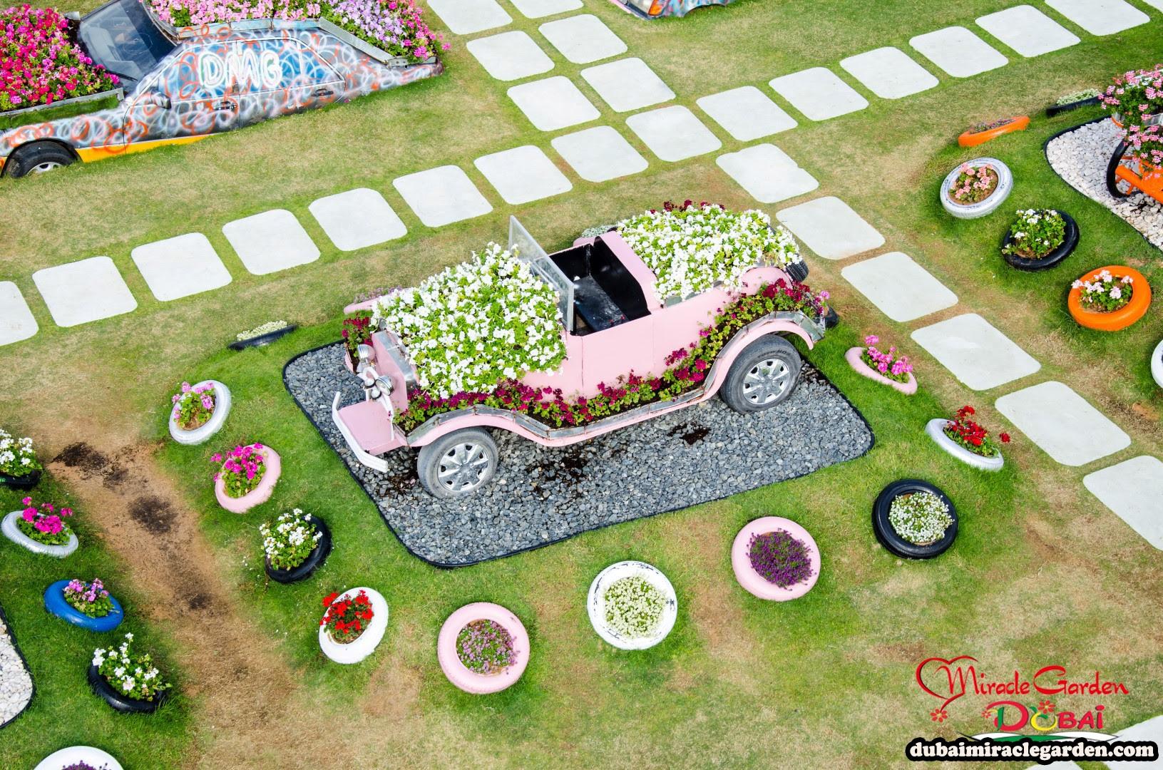 Dubai Miracle Garden 20