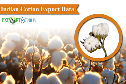 Cotton Export from India to Global Countries – Cotton Export Data 20