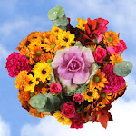 Thanksgving Arrangement Changing Seasons 2 Bouquets by GlobalRose