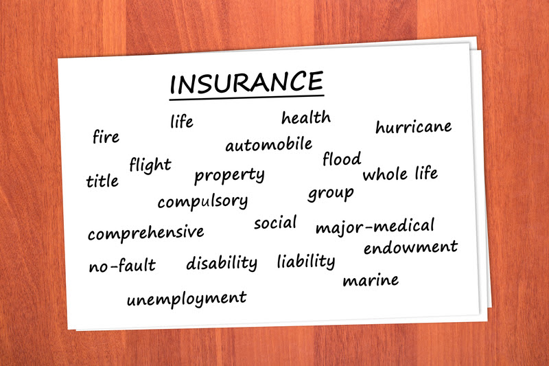 Education About Finance & Insurance: Types of Life ...