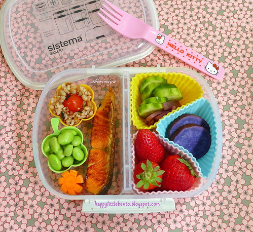 Little Sistema Salmon Bento by sherimiya ♥