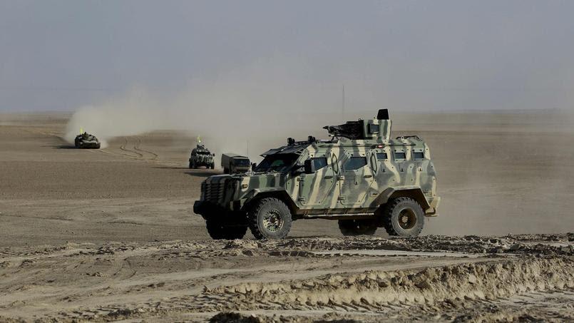 Les FDS, dominées par les Kurdes et soutenues par les Etats-Unis, sont lancées dans la bataille de Raqqa, capitale syrienne de Daech.
