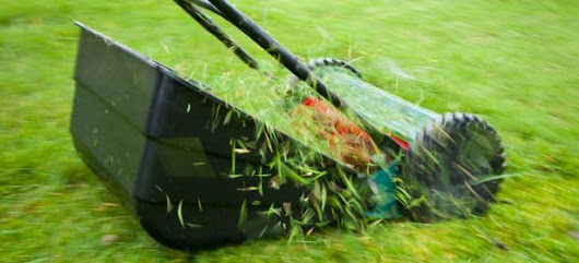 The Best Lawn Mower Tips & Reviews