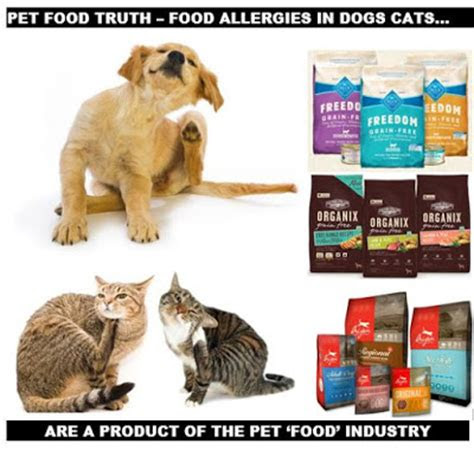 ottawa valley dog whisperer food allergies  dog cats