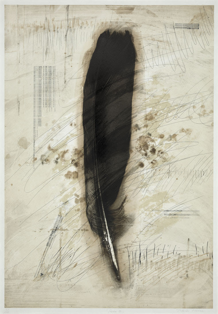 Feather VII