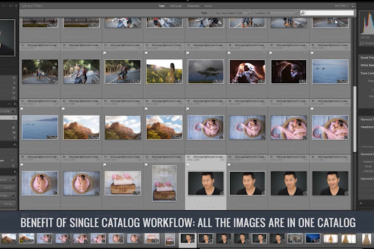 Our Two Recommended Catalog Workflows - SLR Lounge