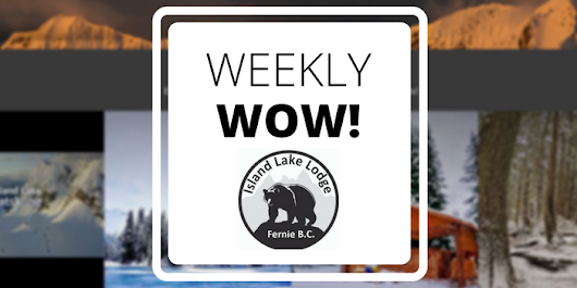 Tradable Bits Weekly Wow: Island Lake Lodge Social Website