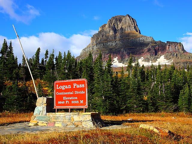 IMG_7693 Logan Pass, Glacier National Park