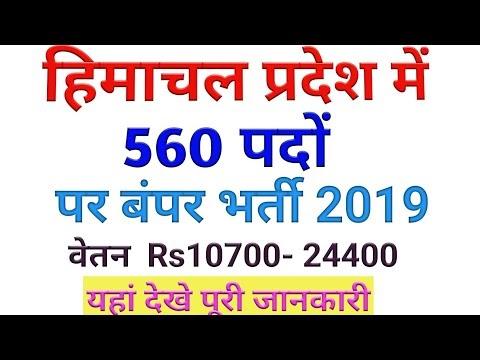 Himachal Pradesh Recuritment 2019 560 Posts