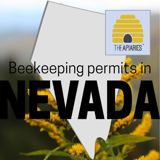 Apiary Leases In Nevada