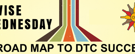 WISE Academy Wednesday: A Road Map to DTC Success